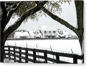 Southfork Ranch In Winter Canvas Print by Dyle   Warren