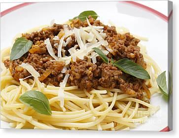 Spaghetti Bolognese Close-up Canvas Print by Paul Cowan