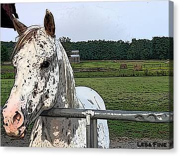 Bales Canvas Print - Speck At The Gate by Lesa Fine