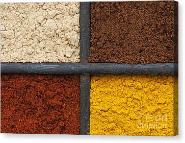 Spices Of India Grid Canvas Print by Tim Gainey