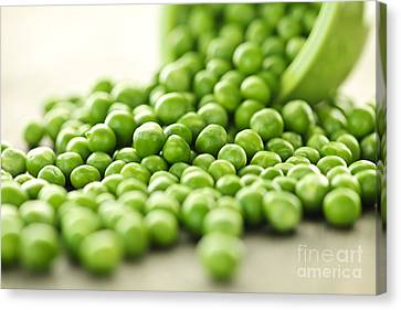 Spilled Bowl Of Green Peas Canvas Print by Elena Elisseeva
