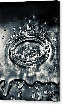 Splash Canvas Print by HD Connelly