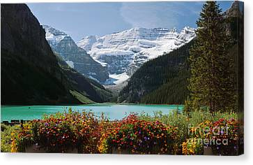 Splendor Of Lake Louise Canvas Print by Frank Wicker