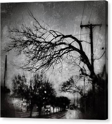 Spooky Tree Canvas Print by Toni Martsoukos
