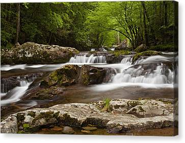 Springtime Cascades In The Smokies Canvas Print by Andrew Soundarajan