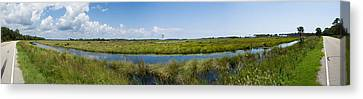 St. Marks National Wildlife Refuge Canvas Print by Rich Leighton