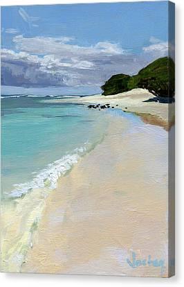 Stable Road Beach Maui Canvas Print