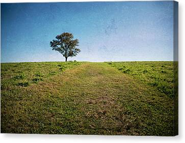 Stands Alone Canvas Print by Karol Livote