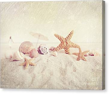 Starfish And Seashells At The Beach Canvas Print by Sandra Cunningham