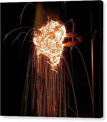 Steel Wool Burning In Air Canvas Print by Science Photo Library