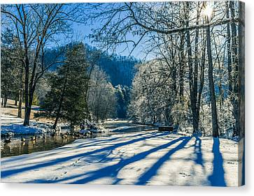 Steele Creek Winter Canvas Print