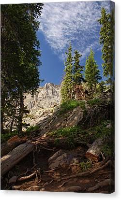 Steep Mountain Hike Canvas Print by Michael J Bauer