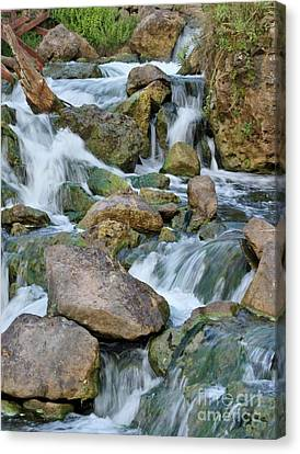 Step Down Falls Canvas Print by Butch Phillips