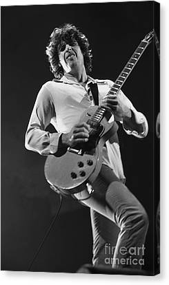 Stone Temple Pilots - Dean Deleo Canvas Print by Concert Photos