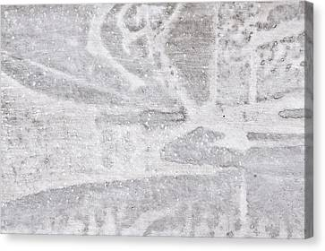 Stone Texture Canvas Print by Tom Gowanlock