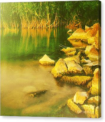 Stones In Front Of The Reed Canvas Print by Odon Czintos