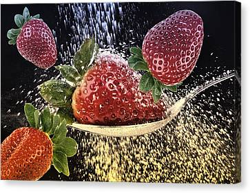 Strawberries Canvas Print by Manfred Lutzius