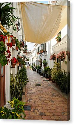 Street Of Benalmadena  Canvas Print