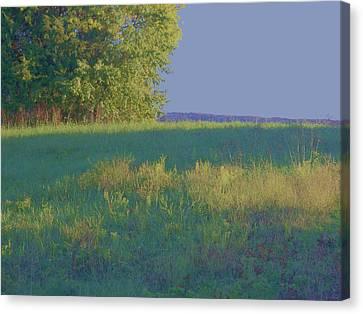 Summer Light Canvas Print by Shirley Moravec