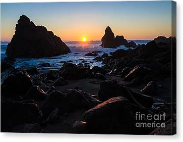 Sonoma Coast Canvas Print - Sun Kissed by CML Brown