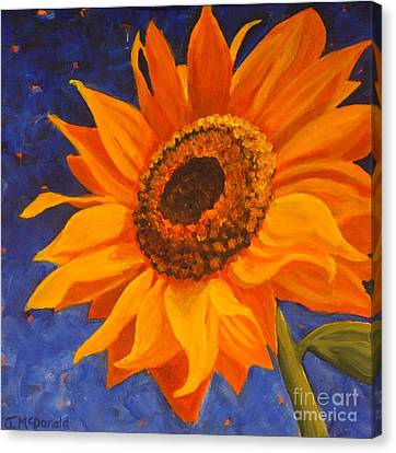 Sunflower Gazing Canvas Print by Janet McDonald
