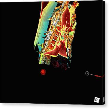 Sunken Chest Canvas Print by D & L Graphics