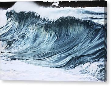 Sunlit Wave Canvas Print by Vince Cavataio