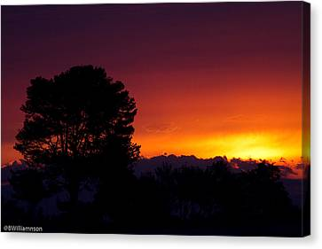 Sunset Canvas Print by Brian Williamson