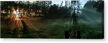 Sunset In A Forest Meadow Canvas Print