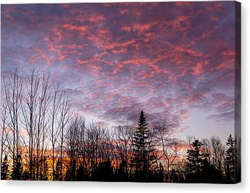 Sunset Jonesport Maine  Canvas Print by Trace Kittrell