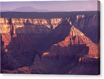 Sunset North Rim Grand Canyon Canvas Print by Liz Leyden