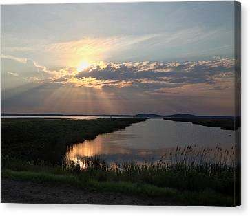 Sunset Rays Canvas Print by Nancy Landry
