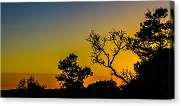 Sunset Silhouette Canvas Print by Debra and Dave Vanderlaan