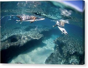 Surfers Over Reef. Canvas Print by Sean Davey
