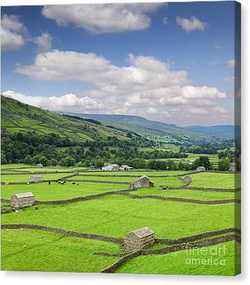 Swaledale Yorkshire Dales England Canvas Print by Colin and Linda McKie