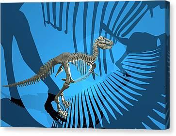T. Rex Dinosaur Skeleton Canvas Print