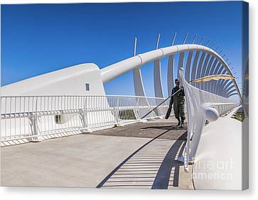 Te Rewa Rewa Bridge Taranaki New Zealand Canvas Print by Colin and Linda McKie