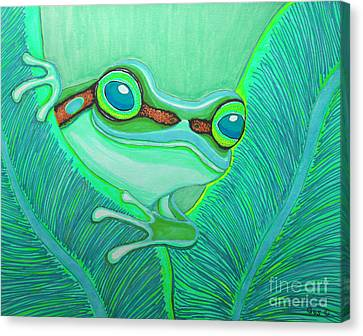 Teal Frog Canvas Print by Nick Gustafson