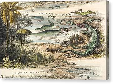 The Antidiluvian World, 1849 Canvas Print by Paul D. Stewart