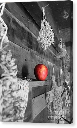 The Apple Canvas Print by Laurinda Bowling
