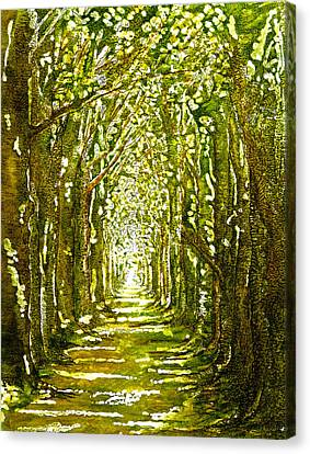 Dappled Light Canvas Print - The Avenue In Spring by Emma Childs