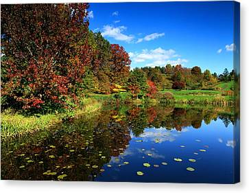 The Beautiful Fall Canvas Print by Paul Ge