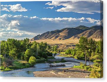 The Big Hole River Near Glen, Montana Canvas Print by Chuck Haney