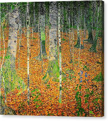 The Birch Wood Canvas Print by Celestial Images