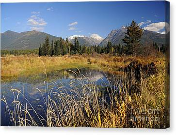 1123a The Cabinet Mountains  Canvas Print