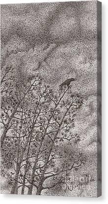 The Crow Canvas Print by Wayne Hardee