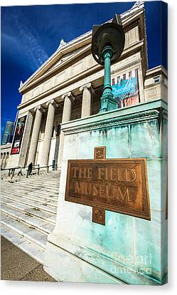 The Field Museum Sign In Chicago Canvas Print by Paul Velgos