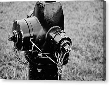 The Fire Hydrant Canvas Print by Amy Lingle