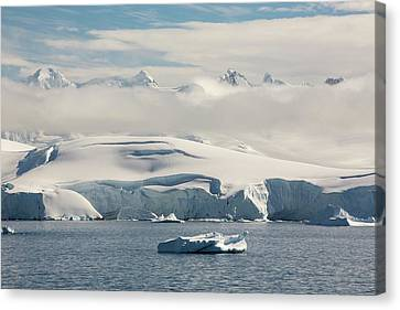 The Gerlache Strait Canvas Print by Ashley Cooper