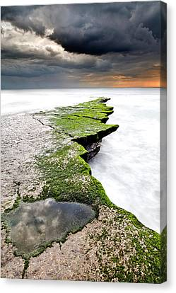 The Green Path Canvas Print by Jorge Maia